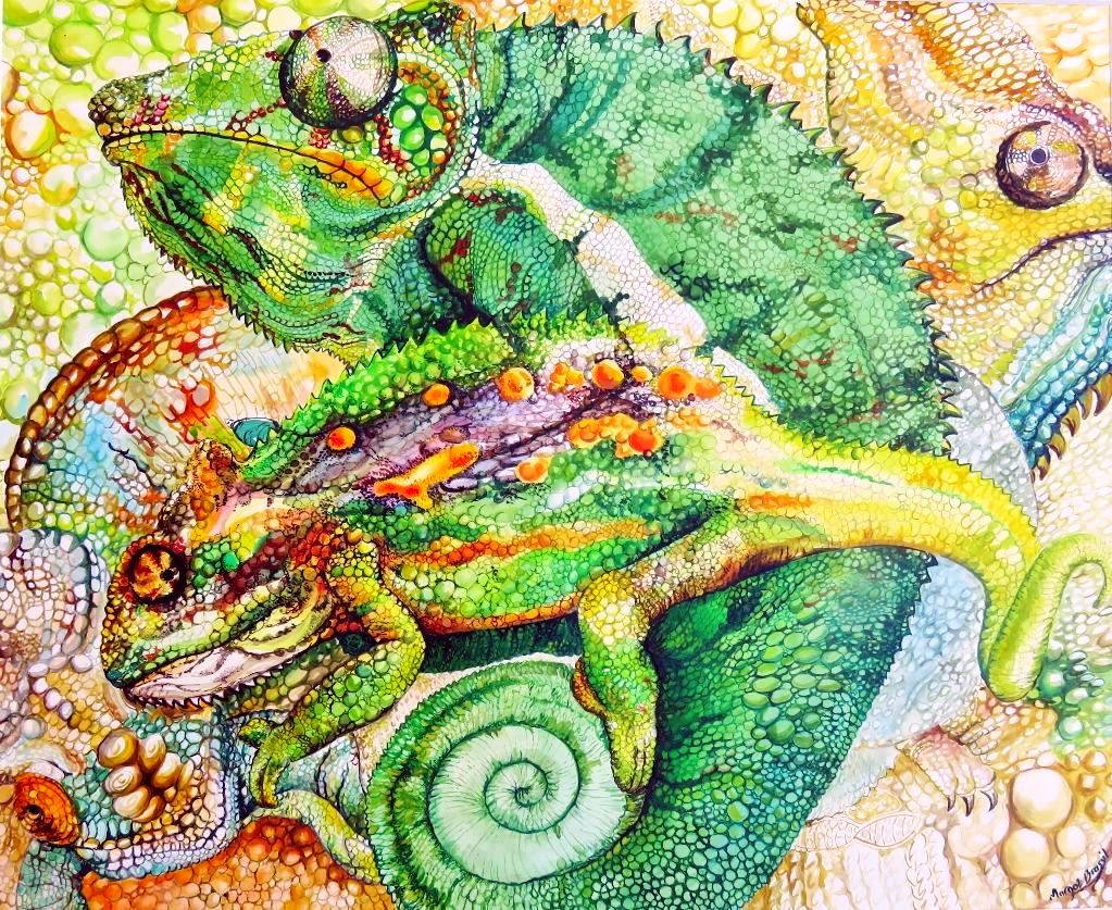 Chameleons, pen and ink drawing