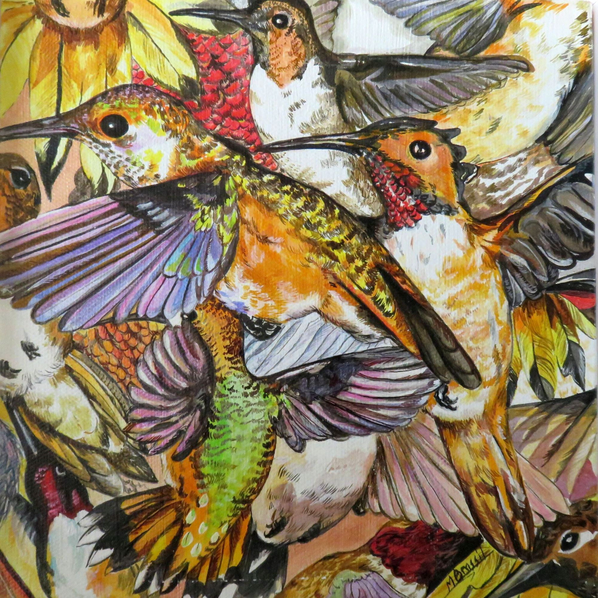 Rufous Hummingbirds.