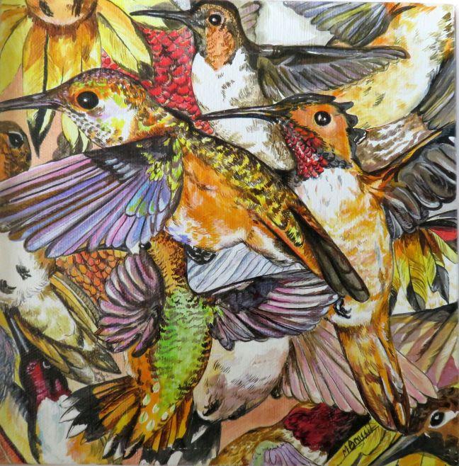 Rufous Hummingbirds.
