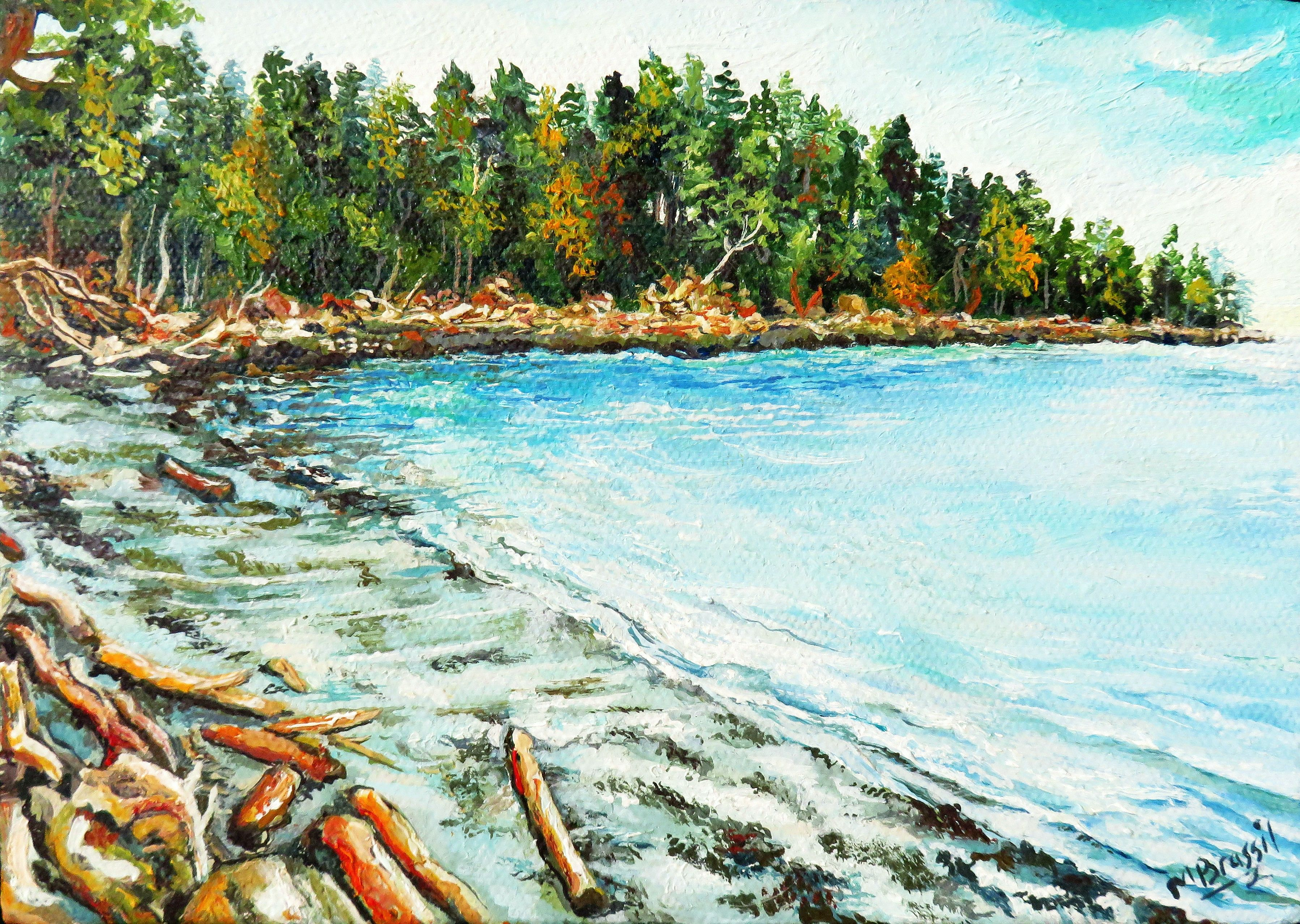 Mayne Island Beach, logs, trees